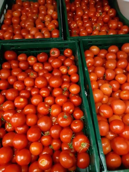 Tomatenkisten